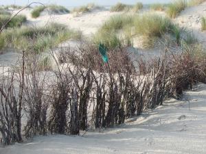 Strand (mit Handschuh)